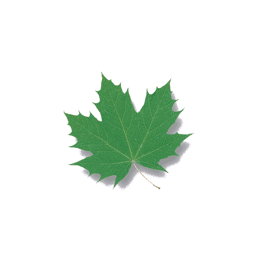 nexusae0_greenify.png