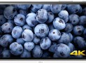 Xperia Z5 Premium: World's Phone With 4K Display
